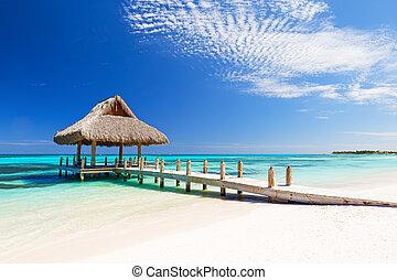 浜, トロピカル, 砂, 美しい, 白