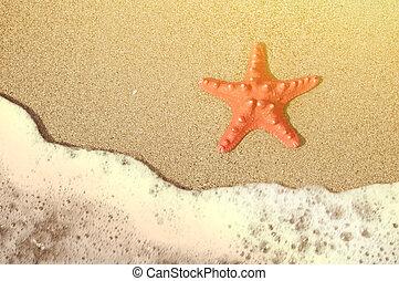 浜, ヒトデ, トロピカル, 海洋, 砂, 波