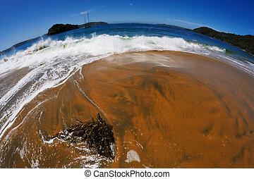 浜。, フィッシュアイビュー
