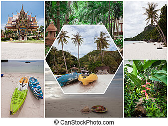 浜, 上に, ∥, トロピカル, island., thailand., flowers., コラージュ
