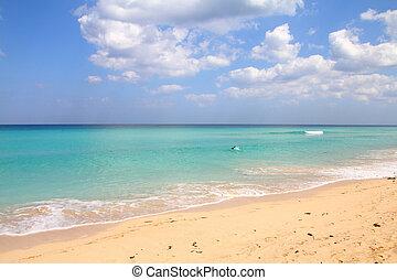 浜, 中に, キューバ
