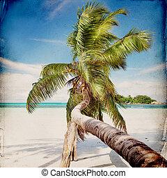 浜, 夢, 背景, グランジ