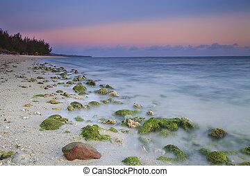 浜, 岩が多い, 日の出, 海洋