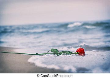 浜。, 愛, バラ, 離れて, vintage., 波, 洗浄, 赤