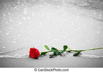 浜, 愛, 色, バラ, 離れて, に対して, 黒, 白, 波, 洗浄, 赤