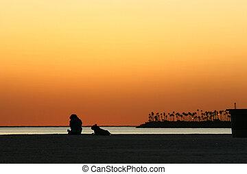浜, 日没, 犬, 人