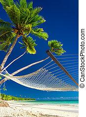 浜, 木, ハンモック, やし, 下に, 島, フィージー, 空