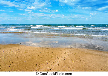 浜, 海, トロピカル