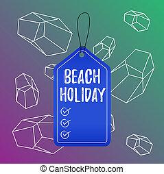浜, 長方形, 執筆, ビジネス, スペース, テキスト, カラフルである, ラベル, 1(人・つ), 付けられる, 概念, 日光浴をする, string., ただ, ブランク, basically, holiday., 背景, 休暇, タグ, 空, 単語