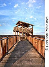 浜, marco, 端, 観察, 島, 板張り遊歩道, 日の出, タワー, 鳥, tigertail