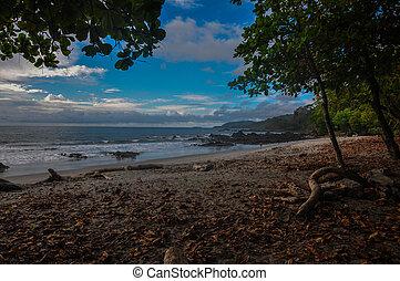 浜, montezuma, 半島, costa, nicoya, rica