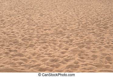 浜, summer.
