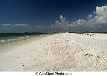 浜, tigertail, 風景