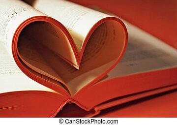 浪漫史, 小說