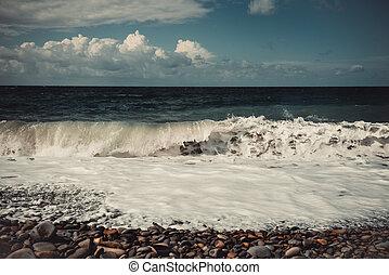 海の 眺め