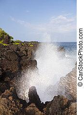 海岸線, 岩が多い, maui, ハワイ