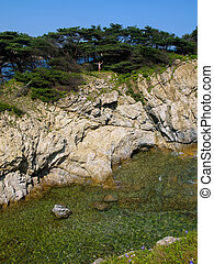 海岸, 岩