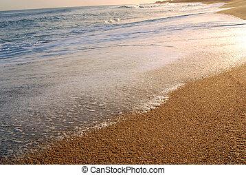 海岸, 泡, 波