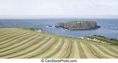 海景, ∥において∥, ∥, carrick, a, rede, 中に, 北アイルランド
