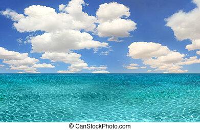 海洋, 海灘場景, 上, a, 明亮, 天