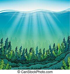 海洋, 海草, 床