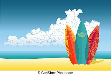 海滩, 冲浪板