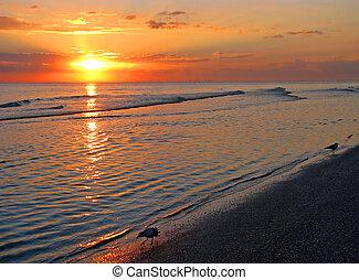 海滩, 日出