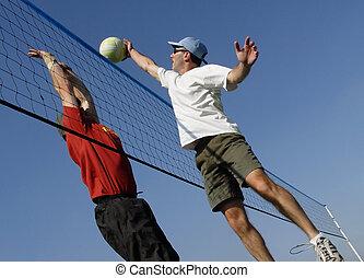 海灘排球運動