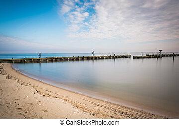 海灘, 北方, 切塞皮克灣, 防波堤, maryland., 海灘