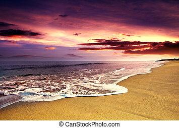 海灘, 波浪