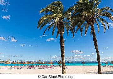 海灘, majorca, mallorca, alcudia, platja, de