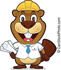 海狸, 微笑, 建筑师