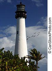 海角, 佛罗里达, 光