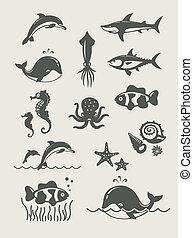 海, 海洋, 魚