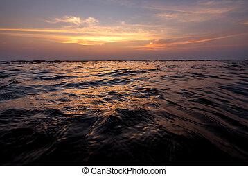 海, sunset., 暗い, 波
