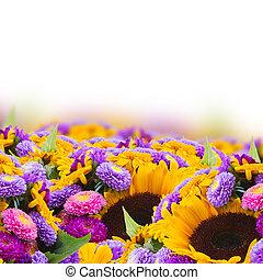混ぜられた, 秋, 花