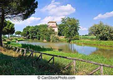 減少させなさい, italy., emilia-romagna., mesola., tower.