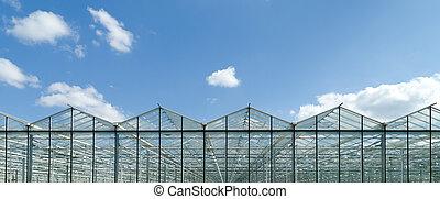 温室, 外面