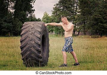 測驗, 拳擊, 年輕人, tire.