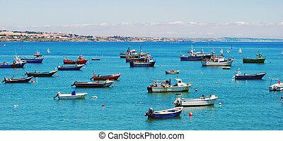 港口, 在中, cascais