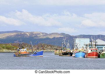 港, 到来, 漁船