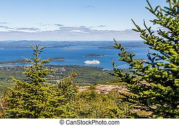 游覽班船, 在, 海灣, 超過, 樅樹樹