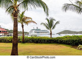 游覽班船, 超過, 棕櫚樹, 在, 海灣