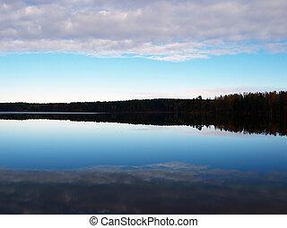 湖の 森林