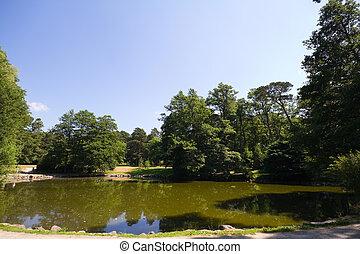 湖, 中に, 夏, 公園