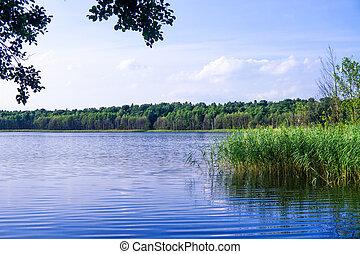 湖, 中に, brandenburg