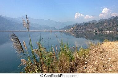 湖, 掃帚, 草, 在旁邊