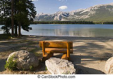 湖, 松树, 长凳