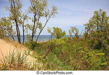 湖, 看法, 密執安, 沙丘, 吉恩, 公園, 頂部, klock