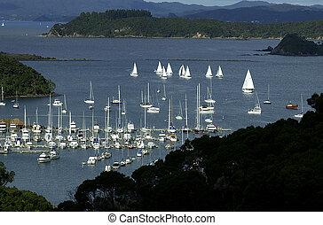 湾, の, 島, ニュージーランド